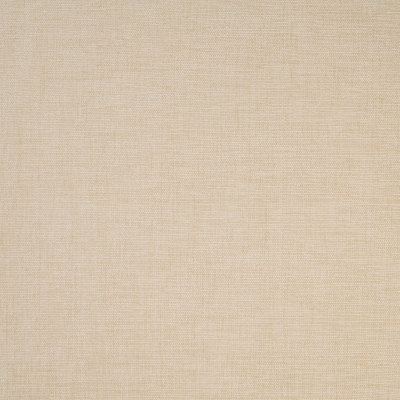B4665 Driftwood Fabric