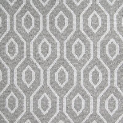 B4694 Fawn Fabric