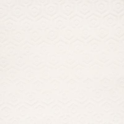 B4739 Pearl Fabric