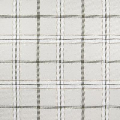 B4776 Chino Fabric