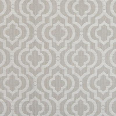 B4789 Flax Fabric