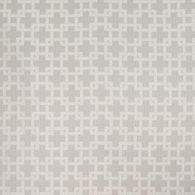 B4895 Fog Fabric