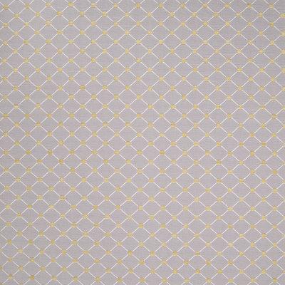 B4904 Rococo Fabric
