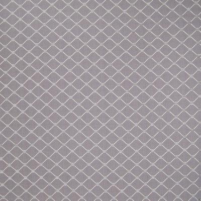 B4910 Platinum Fabric
