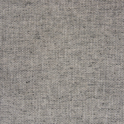 B4919 Coal Fabric
