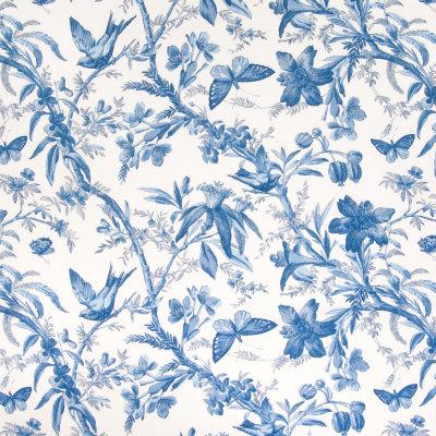 B4945 Cornflower Fabric