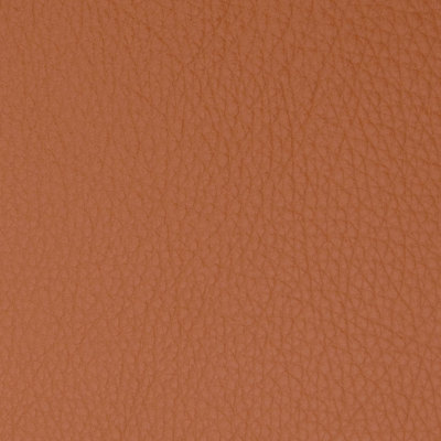 B5096 Brandy Fabric