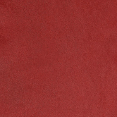 B5145 Obsession Fabric