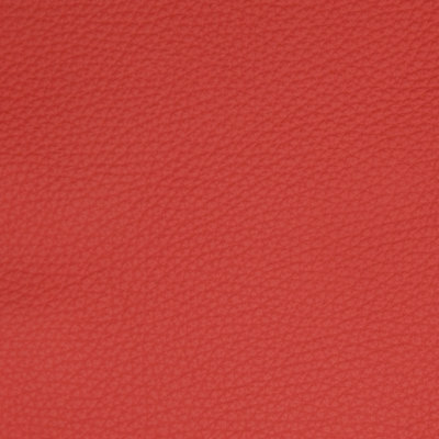 B5147 Poppy Fabric