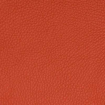 B5149 Blood Orange Fabric