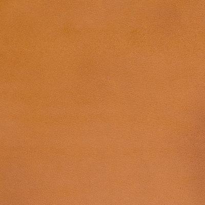 B5150 Spice Fabric