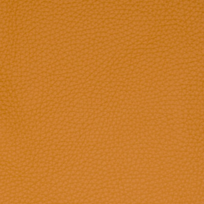B5152 Golden Rod Fabric
