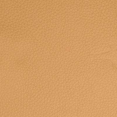 B5155 Camel Fabric