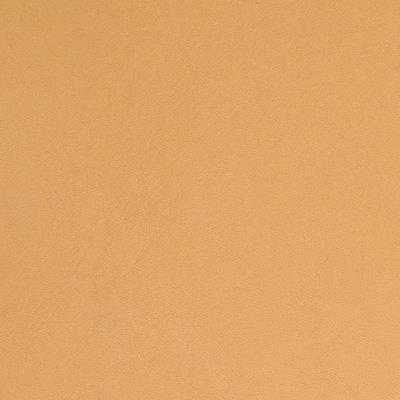 B5156 Desert Fabric