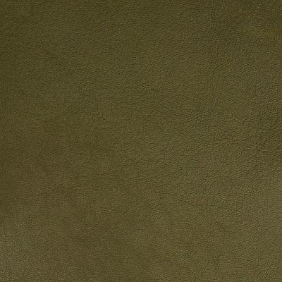 B5168 Bamboo Fabric