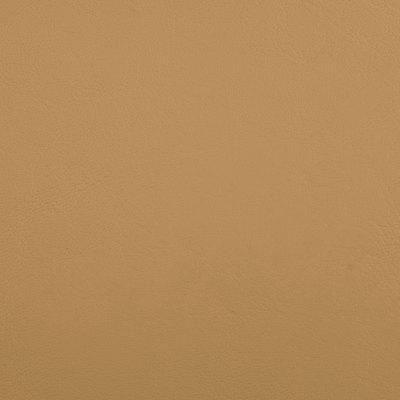 B5189 Zander Dune Fabric