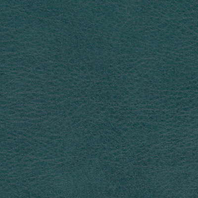 B5198 Allegro Shadow Green Fabric