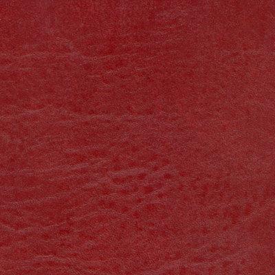 B5221 Seabreeze Reel Red Fabric