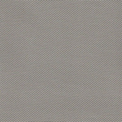 B5260 Trexx Metallic Putty Fabric