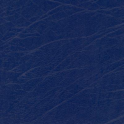 B5284 Aries Midnight Fabric