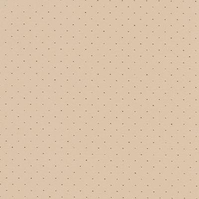 B5288 Orion Sand Dollar Fabric