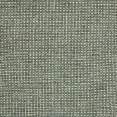 B5342 Cactus Fabric