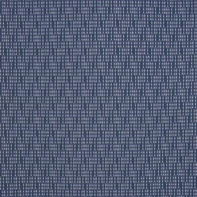 B5373 Blueberry Fabric