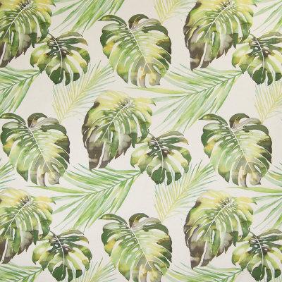 B5492 Verde Fabric
