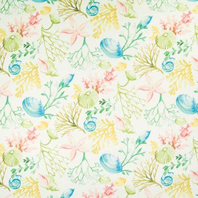 B5493 Reef Fabric