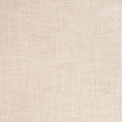 B5519 Sand Fabric