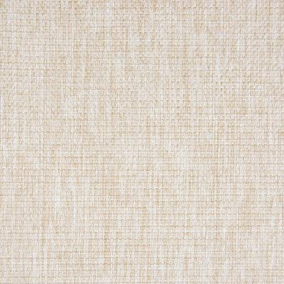 B5520 Parchment Fabric