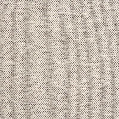 B5529 Marble Fabric