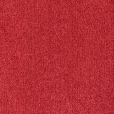 B5564 Tomato Fabric