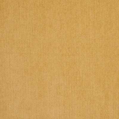 B5572 Cornsilk Fabric