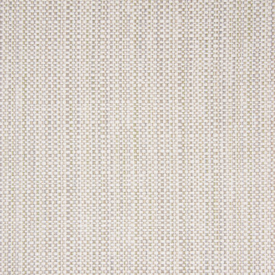 B5620 Rain Fabric