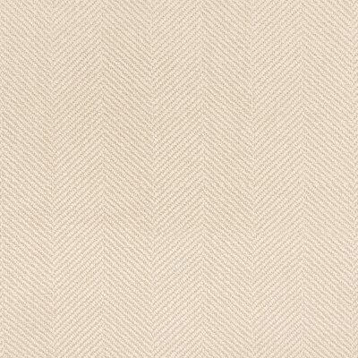B5621 Champagne Fabric