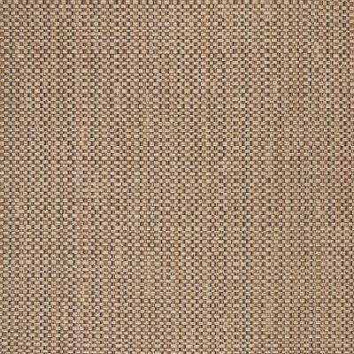 B5629 Kona Fabric