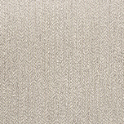 B5636 Nickel Fabric
