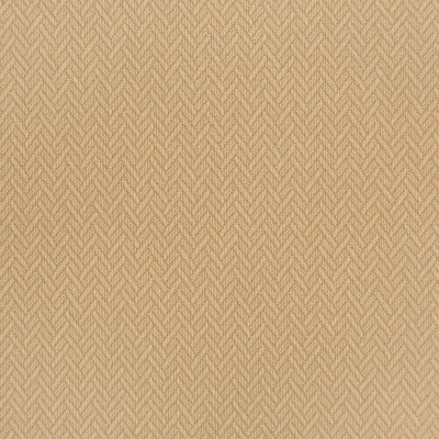 B5660 Ginger Fabric