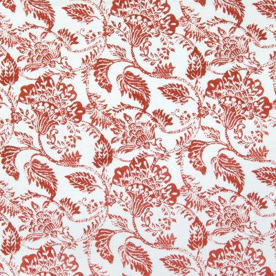 B5717 Paprika Fabric
