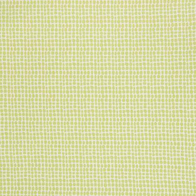 B5721 Acid Green Fabric
