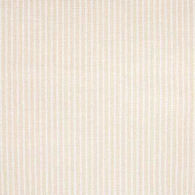 B5745 Bisque Fabric