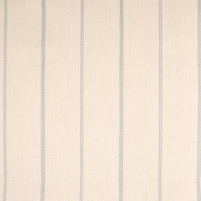 B5746 Sky Fabric