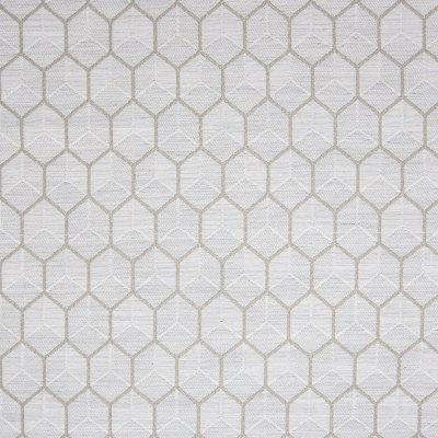 B5758 Nutria Fabric