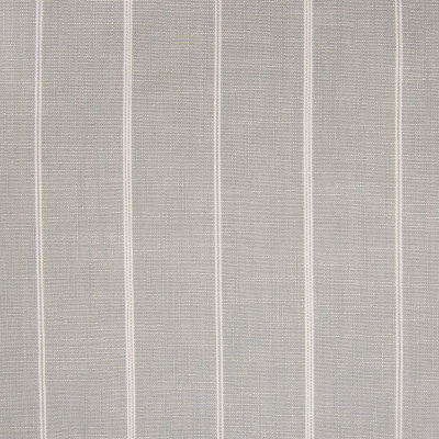 B5768 Silver Fabric