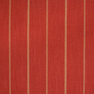 B5786 Persimmon Fabric