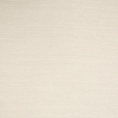 B5979 Birch Fabric