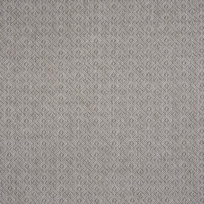 B6001 Slate Fabric