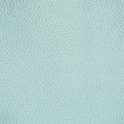 B6029 Seafoam Fabric