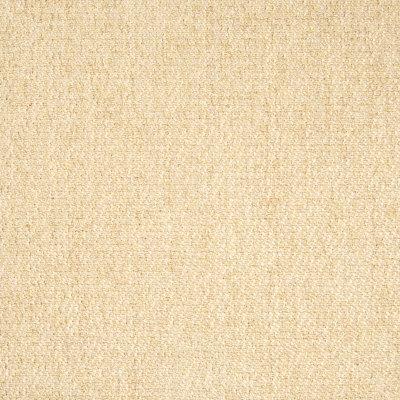B6091 Corn Fabric